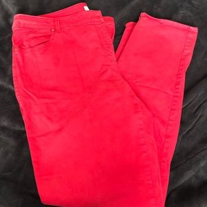 Chico's red plants Size 2.5